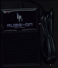 pc%20djmax%20muse-on%20pedal.jpg